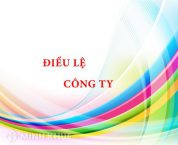Dieu le cong ty theo quy dinh luat doanh nghiep